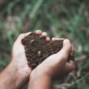 Kel Lake Garden Centre - Soil & Fertilizer