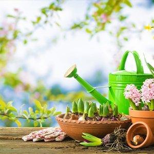 Garden Accessories & Supplies